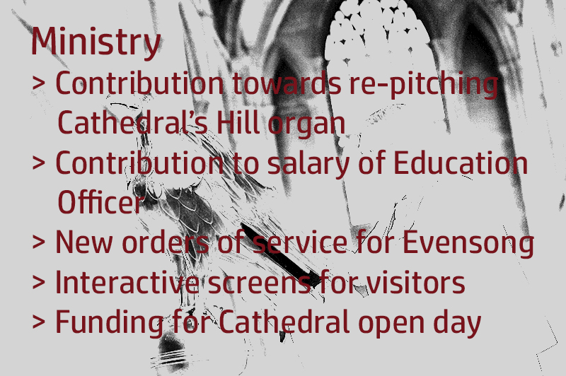 Help for Cathedral Ministry